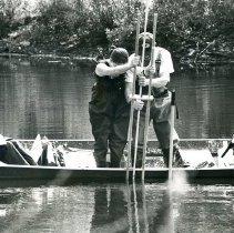 Image of 1200.11.174 - Davidson Park Survey