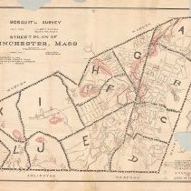 Image of 1300.60 - Mosquito survey, July 1926/Street plan of Winchester March 1916.