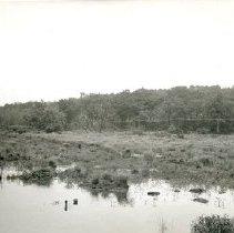 Image of Aberjona River