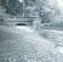 Image of 1200.11.374 - Aberjona River High Water