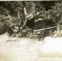 "Image of 2010.021.053 - ""The Disaster"" 1938 Hurricane. Bob Wicks ""Hawick"", in tree, north of the catamaran."