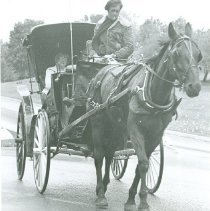 Image of HORSE AND CARRIAGE - HORSE AND CARRIAGE