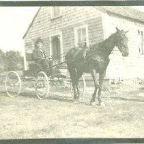 Image of 2 MEN WITH HORSE AND BUGGY IN FRONT OF HOUSE - 2 MEN WITH HORSE AND BUGGY IN FRONT OF HOUSE