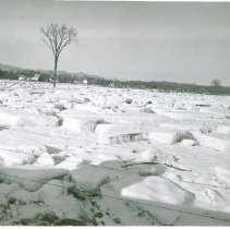 Image of ICE DEPOSITS ON PASTURE IN EAST CONWAY - ICE DEPOSITS ON PASTURE IN EAST CONWAY