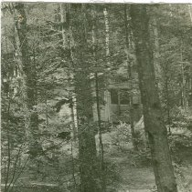Image of PINE KNOLL CAMP FOR GIRLS-ALBANY, NH - PINE KNOLL CAMP FOR GIRLS-ALBANY, NH