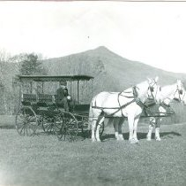 Image of LITTLEFIELD TEAM AND BUGGY - LITTLEFIELD TEAM AND BUGGY