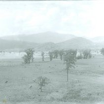 Image of PASTURAL FIELD WITH MOUNTAINS - PASTURAL FIELD WITH MOUNTAINS