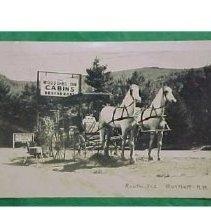 Image of Woodshed horses 2 - Woodshed Inn and Cabins, Bartlett - horses