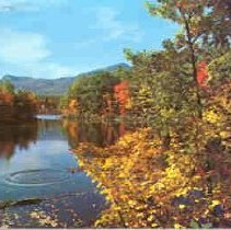 Image of Red Eagle Pond - Red Eagle Pond
