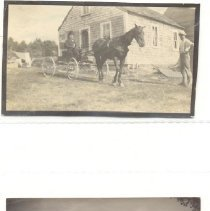 Image of Horse and buggy; country scene  (Holly3) - Horse and buggy; country scene