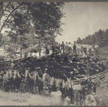 Image of Logging Crew with William Fitzsimmons - 2012.10.1