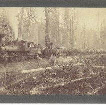 Image of Polson Bros. Logging Co. Train - 2011.10.10
