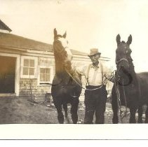 Image of Elmer Buzzell (Bussell) with Horses - 2011.10.37