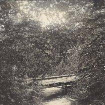 Image of Pleasant Pond Stream with Bridge - 2012.13.85