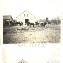 Image of Walter Robinson's Horses Near Barn - 2012.31.24