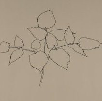 Image of Woodland Plant by Ellsworth Kelly