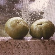 Image of Green Tomatoes on Back Porch- Williamston, NC by Jerry Raynor