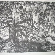 """Image of Graphic - The first lithograph  in a series to be produced by the ECU School of Art and Design faculty to raise scholarship funds for the school.   """"I draw wetlands because it is one of the remote places left in eastern North Carolina.  The quietude of these spaces reveals a unique relationship, a conversation if you will, where a place speaks to me. My landscape real a complex relationship with a locale that becomes a translation of an inner landscape"""
