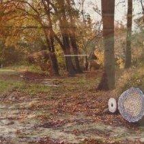 Image of Print, Photographic - Weaving Logs, Photograph, 2010  by Laritza Garcia