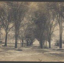 Image of P1.019 - Print, Photographic