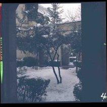 Image of V.1995.4 - V.1995.4.275