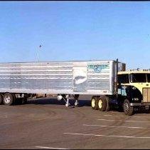 Image of V.1995.4 - V.1995.4.499os