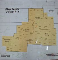 Image of map of the Ohio Senate District #19] - Poster