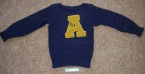 Image of Sweater, purple color with gold color letter A on the front.   - Objects Collection