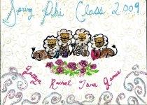 Image of Plaque Spring 2009 pledge class Phi Mu Delta