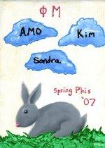 Image of Plaque Spring 2007 pledge class Phi Mu Delta - Plaque