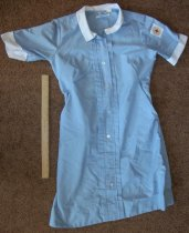 Image of Uniform.  Short sleeve blue dress - nurses uniform dress
