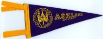 Image of Pennant Purple color with gold colored trim.  Has Ashland College seal in gold color with Ashland College lettering. - Pennant