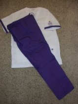 Image of nurses uniform dress
