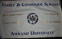 Image of Banner-vinyl with lettering - Banner