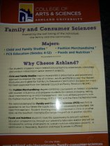 Image of Posters set of three-marketing/advertising for the Family & Consumer Sciences Department ca. 2006. - Poster