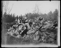 Image of Lou Alexander among the cabbages, photo by Alice Austen, 1891