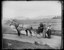 Image of [Horses, Mr. & Mrs. M. Miss Walsh] - Negative, Glass-plate