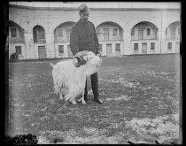 Image of Regiment goat & Mr. March, photo by Alice Austen, 1896
