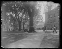 Image of The yard and crowds. Harvard, photo by Alice Austen, 1892