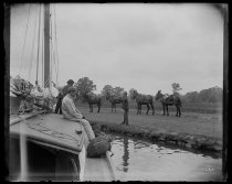 Image of Four mules & Wabun - Negative, Glass-plate