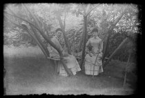 Image of J. Martin & A. Austen - Negative, Glass-plate