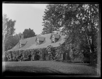 Image of House & trunk of Maple tree & Grandpa - Negative, Glass-plate