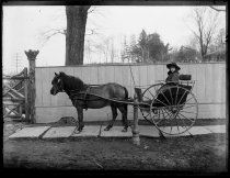 Image of Roger Emmons in two wheel cart, photo by Alice Austen, 1889