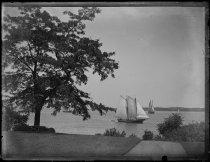 Image of View from front door, tree & schooner, photo by Alice Austen, 1887