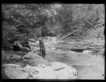 Image of The Brook & group, photo by Alice Austen, 1889