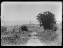 Image of Road, distant mts, monument, Jule & donkey, photo by Alice Austen, 1890