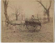 Image of Harold Applegate in his donkey cart, Staten Island, ca. 1898
