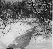 Image of Richmond Creek, Staten Island, photo by H.G. Steinmeyer Jr.