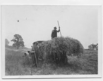 Image of [Haying on the Elmer Butler estate] - Print, Photographic