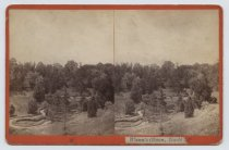 Image of Wann's Glen, Todt Hill, photo by Isaac Almstaedt, ca. 1878-1885